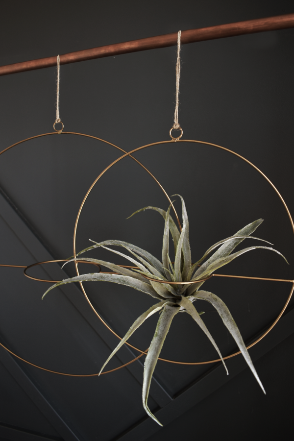 varro suspended plant hanger ring gold mlle artsy ottawa gatineau